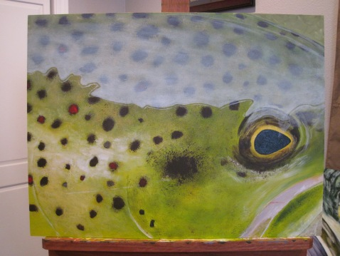 brown trout painting